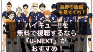 アニメ ハイキュー 無料 U-NXET