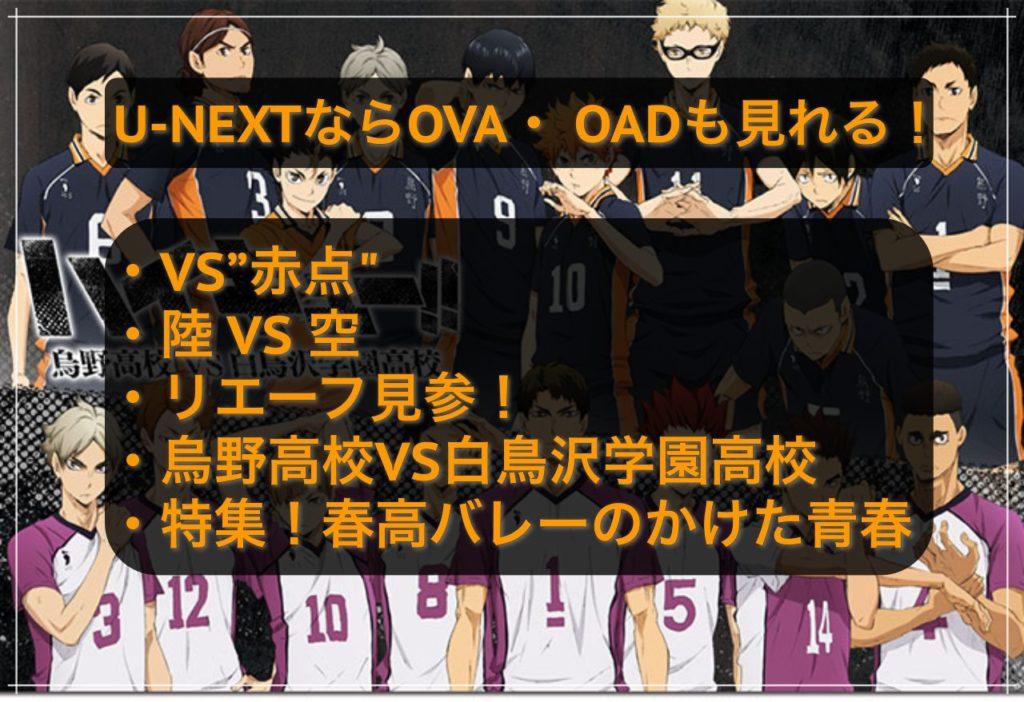 ハイキュー!! OVA  OAD ユーネクスト